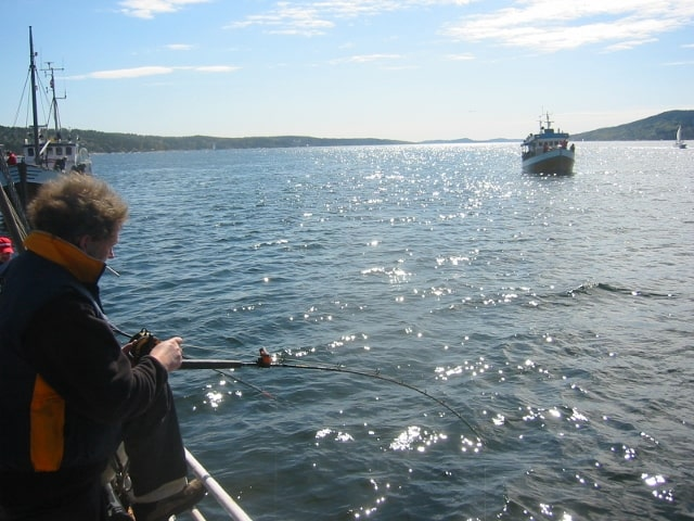 fiske fra båt i ski havfiskeklubb