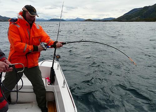napp på stanga i ski havfiskeklubb